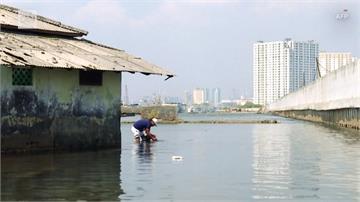 全球/近半市區低於海平面 印尼雅加達沉沒倒數
