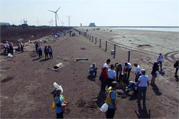 木建材業做環保 號召百名員工海岸植樹2千顆