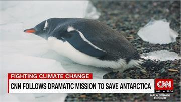 地球最後淨土也髒了? 專家籲南極設保護區