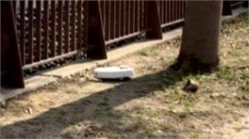 掃地機器人蹺家遛噠到草叢邊 民眾發文尋主人