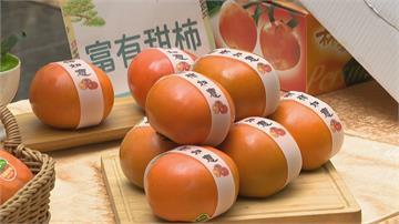 一年一度「和平盛柿 盟約五葉松」 泡湯吃甜柿