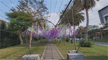 打造「鬼滅」紫藤花場景 50根鋼筋外露落漆