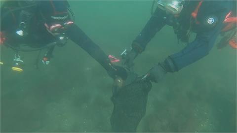 結合潛水興趣 丹麥生物學家擔任海底清道夫