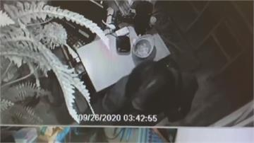 看見監視器仍照偷 大膽小偷趁日料店開店前行竊 得手8萬多元