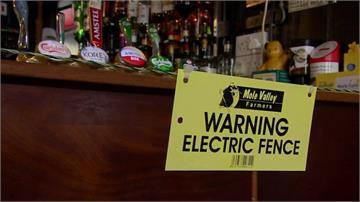 「極端」防疫新生活 英酒吧老闆裝通電柵欄