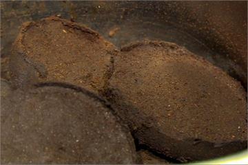 不要丟!咖啡渣用途多 不僅除臭還能防蚊