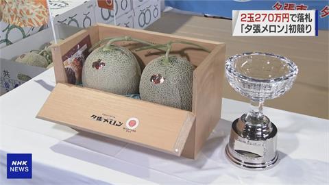 北海道夕張哈密瓜2021年競標最高價 瓜王「2顆70萬台幣」