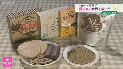 靠吃蟲解決糧食危機 日大學生研發昆蟲零食