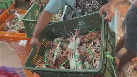 「萬里蟹好食節」開跑 店家積極備貨迎連假人潮
