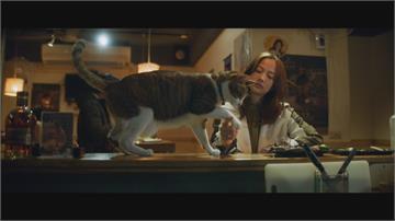 簡嫚書挑戰冷酷院長 最後悔沒上到寵物溝通課