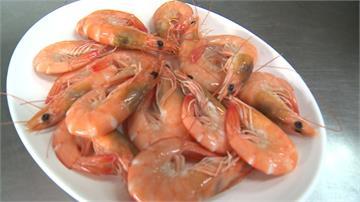 西部養殖業休池 東部白蝦供不應求價翻漲
