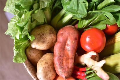 圍堵疫情神器!雲林良品推「防疫蔬菜箱」 不出門也能買健康