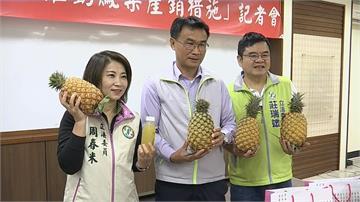 因應疫情恐衝擊鳳梨外銷 農委會出招穩價格