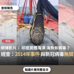 事實查核/【錯誤】網傳影片宣稱「現在的海魚 盡量不要吃 會有印度病毒」、「最近印度的屍體已經流到馬來西亞這裡了!告訴你身邊的朋友 不要吃海鮮」?