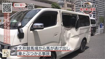 日東京離奇車禍 賽馬落跑撞車