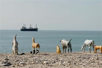 快新聞/動物雕像「站一排」現蹤北濱海灘 在地人驚呼:在等諾亞方舟?