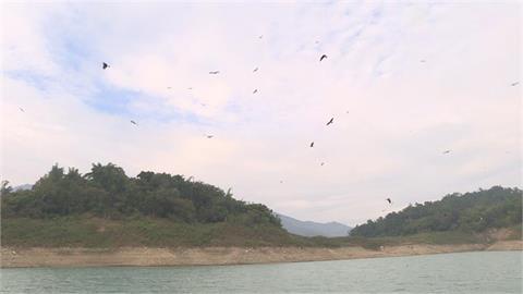 快新聞/豪大雨發威! 曾文等3大水庫進帳約200萬公噸 可供台南用水2至3天