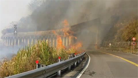 全面灌救!阿里山森林大火 疑遊客亂丟菸蒂