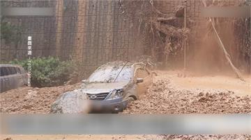 「老樹砸中」福岡雉琴神社「正殿全毀」「海神」狂掃九州釀37傷後登陸南韓釜山