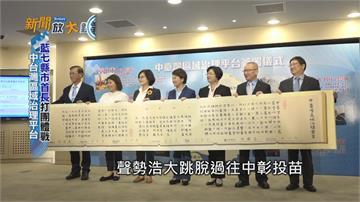 中台灣4 3 藍營縣市長打團體戰
