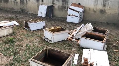 蜂箱貨車自撞釀禍!  上千蜜蜂竄出滿天飛