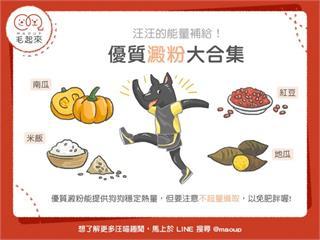 【狗貓餵養知識】狗狗的能量補給!優質澱粉大合集|寵物愛很大
