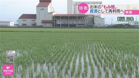 稻殼再利用!「稻殼炭」協助氫氣動力車開發