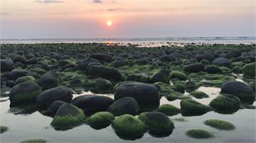 大自然的抹茶饗宴!苑裡「綠石頭」陽光下閃閃發光