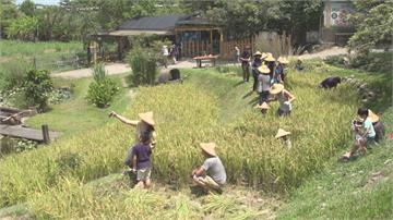 注入管理、行銷 休閒農場特色經營成功轉型
