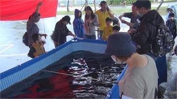 釣蝦、拋撒網競賽...剝蝦比賽超刺激!五結鄉水產豐年祭 互動式體驗漁村生活
