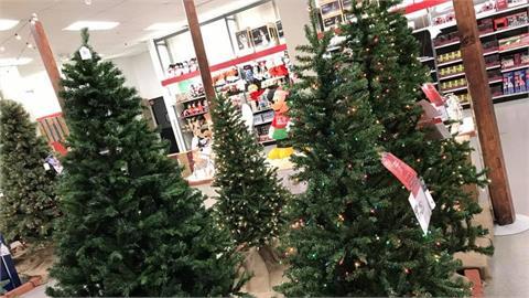 聖誕節沒有聖誕樹!後疫情衝擊全球供應鏈 貨運塞港美零售商租船自救