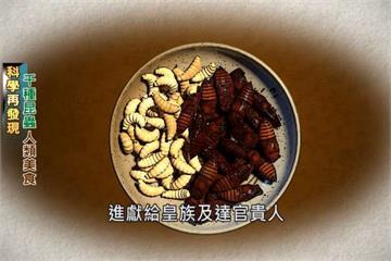 美味蟲蟲大餐 3000年前已見人類歷史