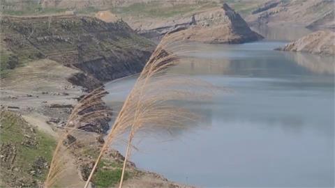 春雨報到 中部水情仍吃緊烏龜、鯉魚好渴!苗栗鯉魚潭水庫見底