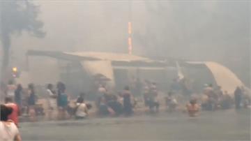 希臘野火至少88死 民眾驚險跳海逃生