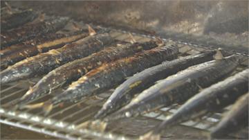 捕不到!秋刀魚比去年貴1.4倍中秋節想烤魚得掂掂荷包