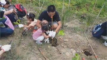 產物保險業者做公益 林口海灘種植300顆樹苗