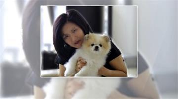 世界首例!香港證實寵物犬感染武肺 無證據會傳人