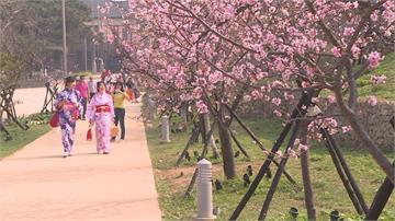 春節搶頭香、團拜全取消! 「最冷清春節」新北、宜花觀光爆退訂潮