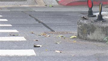 亂丟垃圾躲稽查被撞死 家屬告2巡查員