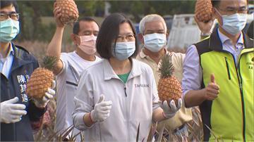 快新聞/中國突襲禁鳳梨 蔡英文籲「免驚免煩惱」:不讓農民收入減少是最高原則
