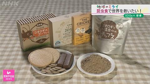靠吃蟲解決糧食危機 日本大學生研發昆蟲零食