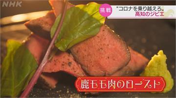 日本也愛野味?每年撲殺7萬頭動物製「野味包」