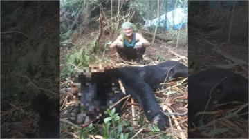 髮指!工寮旁驚見台灣黑熊屍體 山老鼠盜採林木還獵殺黑熊生吞活剝