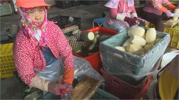 搶購鳳梨抗中國 農民呼籲勿搶收 顧好品質最重要 鳳梨盛產期還沒到