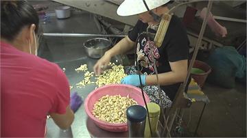 「獨頭蒜」稀有超級貴 價格為一般蒜頭6倍