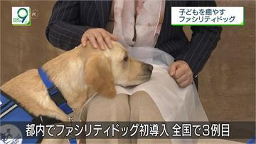 超萌「狗醫生」!日本只有3隻治療犬獲認證