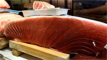 黑鮪魚文化觀光季結合在地產業 屏東縣推輕旅行