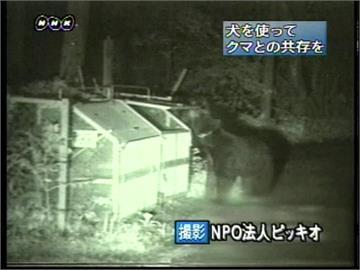北陸新幹線列車 在輕井澤站附近撞熊急剎
