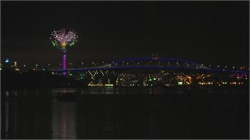 成功防疫迎新年紐西蘭施放煙火璀璨亮麗