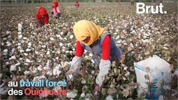 全球/不穿新疆「血棉花」!美國禁新疆爭議紡織品進口
